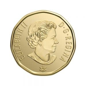 canadees geld munt 1 dollar