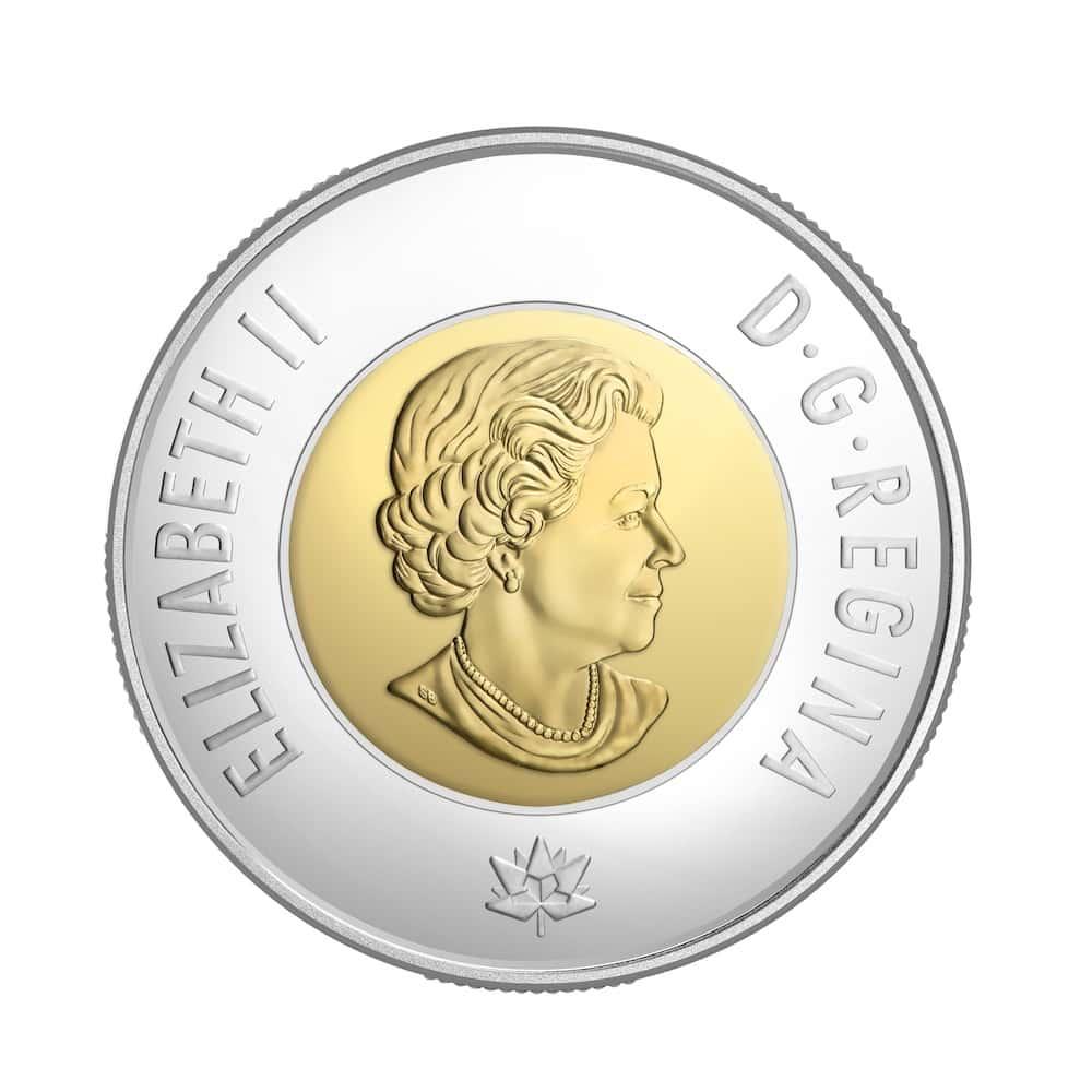 canadees geld munt 2 dollar