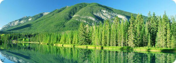 Campagne van Parks Canada Banff National Park