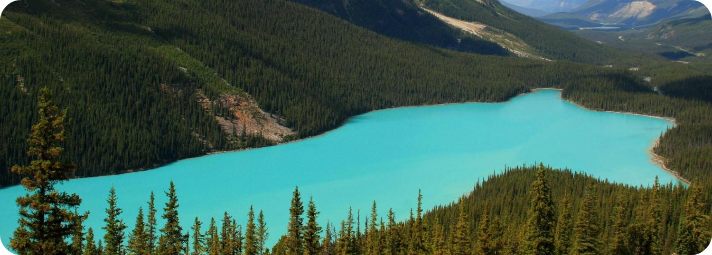 provinciale parken nationale parken Discovery Pass 2017