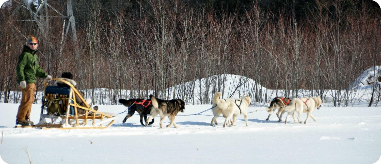 Manitoba landschap toerisme weer klimaat