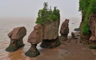 New Brunswick klimaat weer toerisme Hopewell Rocks