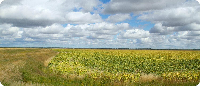 Saskatchewan weer klimaat landschap