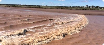 Tidal Bore Rafting Nova Scotia New Brunswick