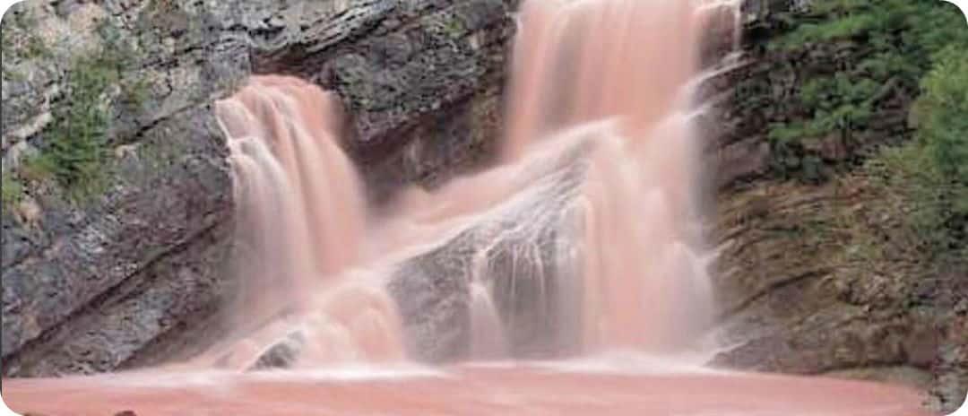 Cameron Falls Waterton Lakes roze waterval