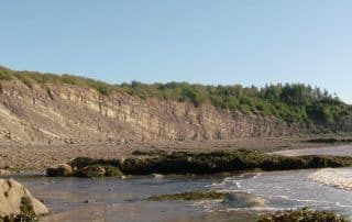 Joggins Fossil Cliffs Nova Scotia