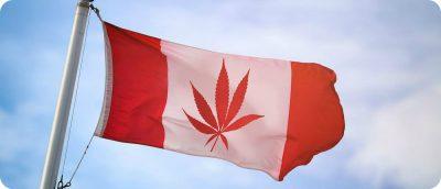 Canada cannabis bezorgservice