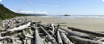 Long Beach Pacific Rim National Park Vancouver Island