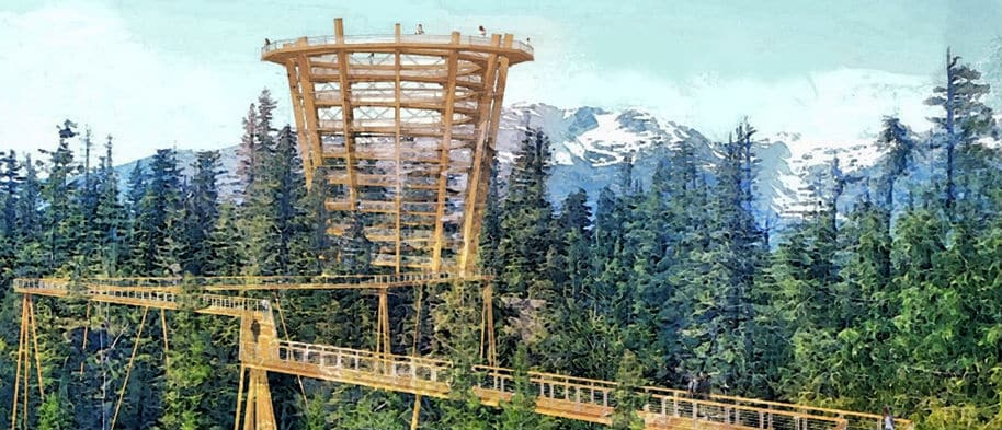 Sea to Sky Gondola Elevated Tree Walk bij Squamish