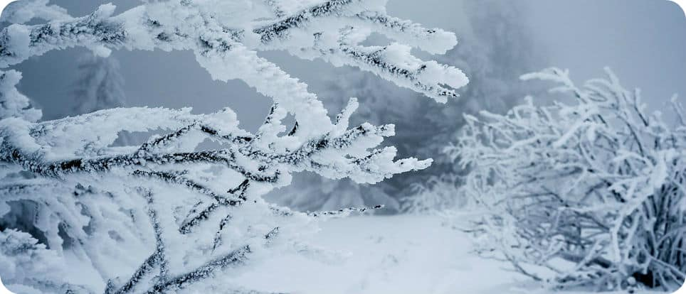 canada temperaturen records winter zomer koude warmte