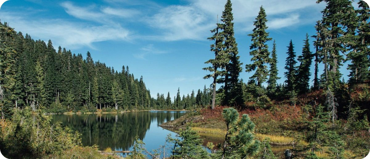 Strathcona Provincial Park highlights bezienswaardigheden