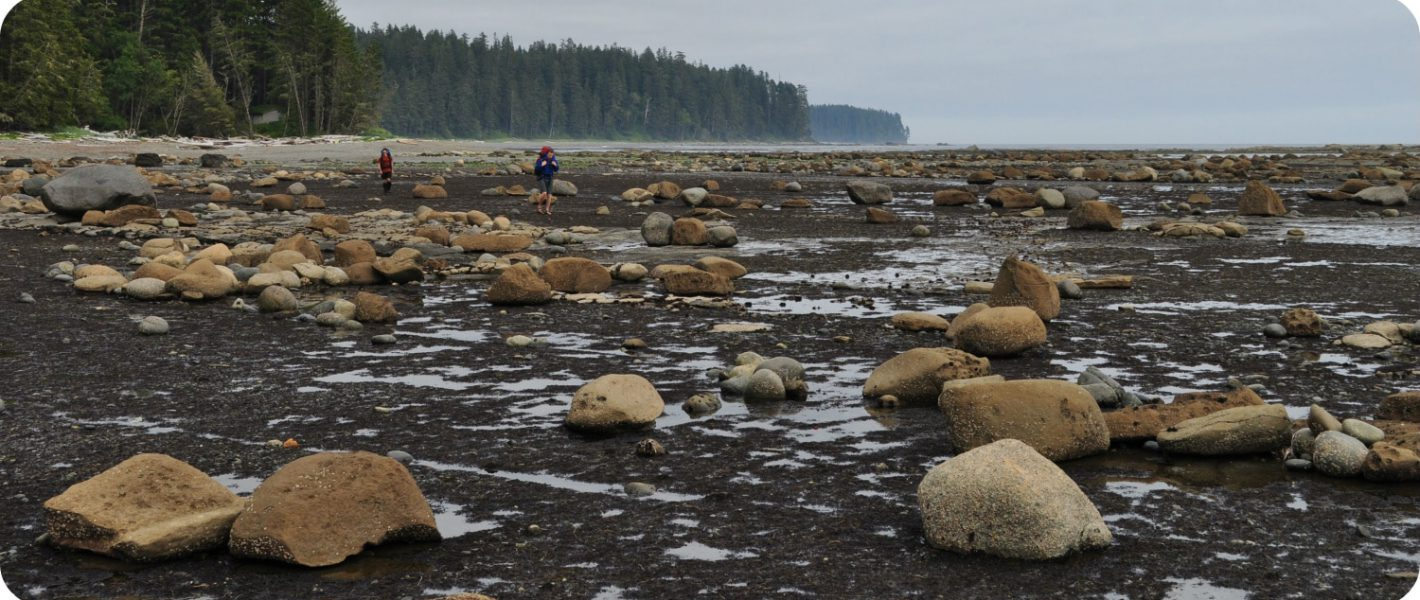 Pacific Rim National Park Vancouver Island