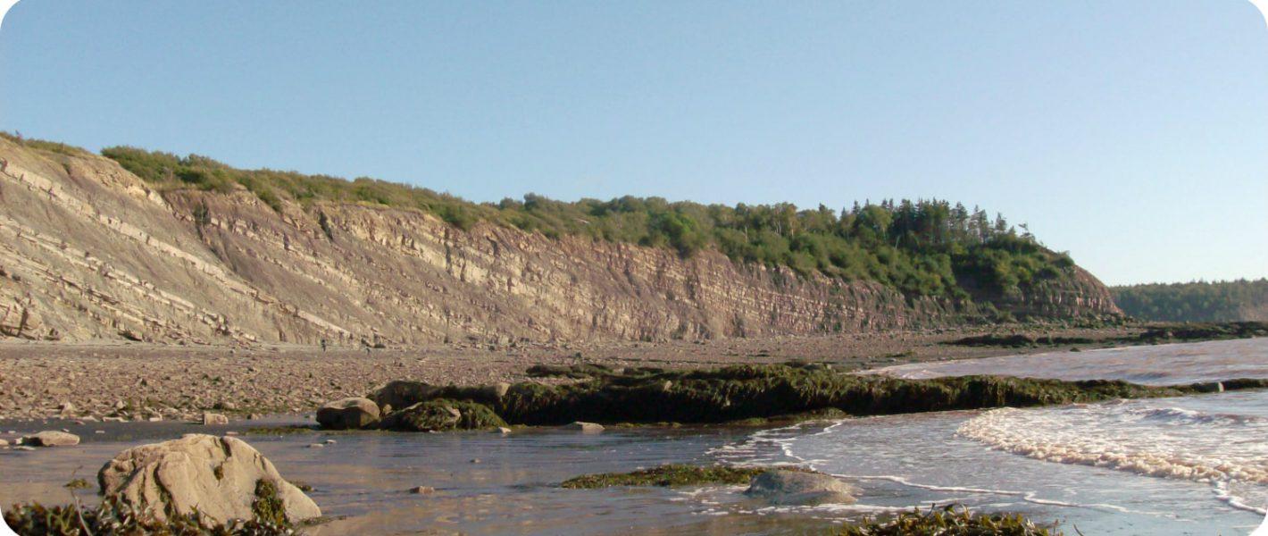Joggins Fossil Cliffs Nova Scotia