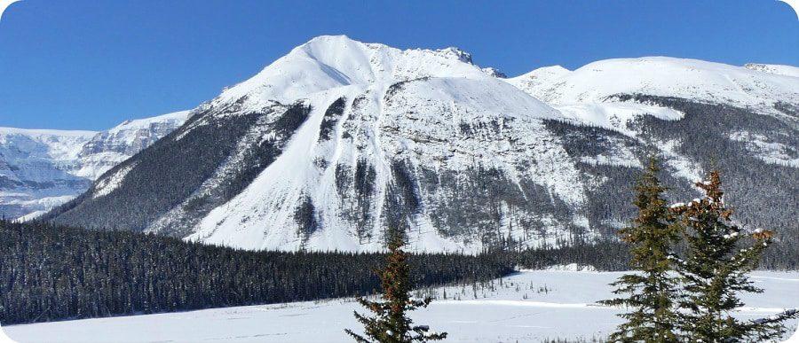 Marmot Basin Jasper wintersport